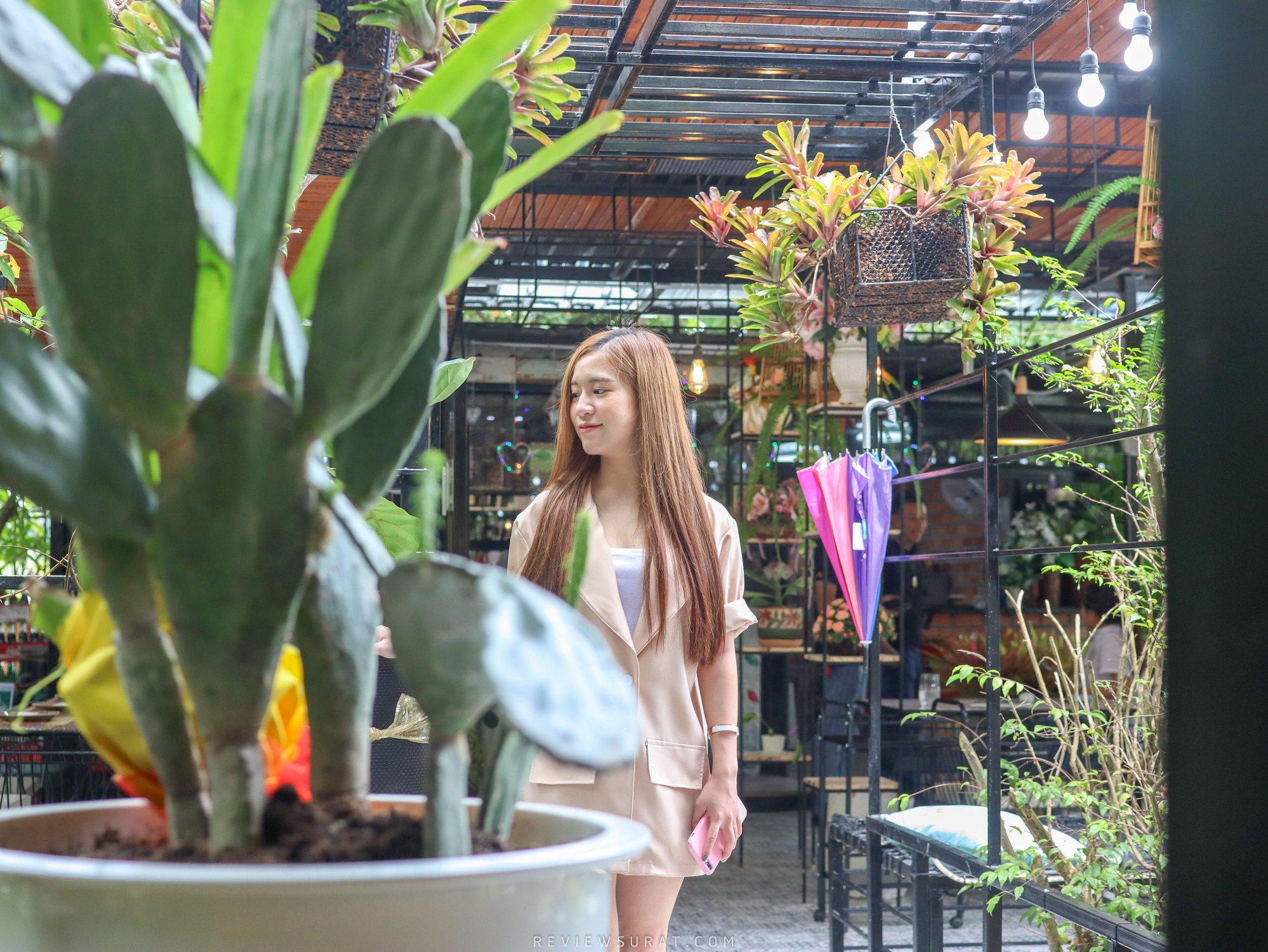 ร้านน่ารักกก  จุดเช็คอิน,นครศรี,คาเฟ่,กลางป่า,กลางเมือง