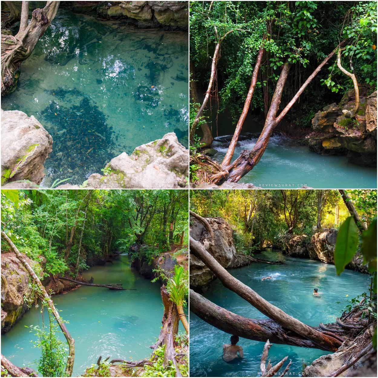 ห้ามพลาดกับน้ำใสๆ ธรรมชาติดีๆบรรยากาศสุดชิลลล คลองน้ำใส สุราษฎร์