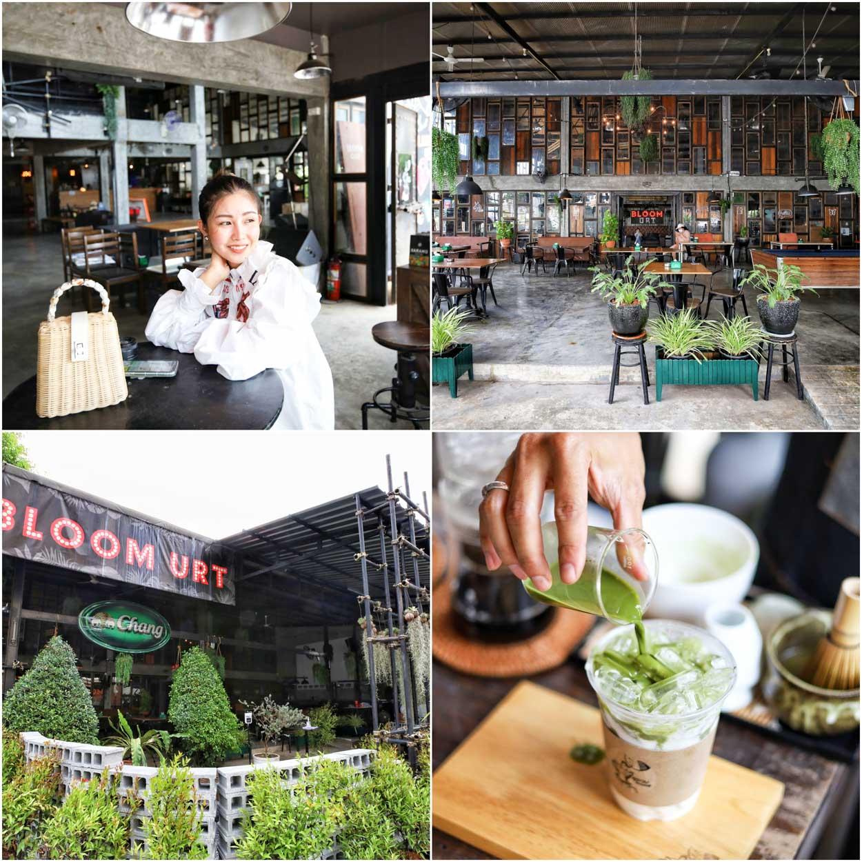 ลุงกบโฮมคอฟฟี่ at Bloom URT คาเฟ่สุราษฏร์ธานี ใจกลางเมือง